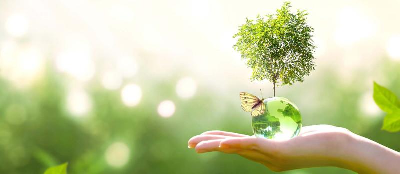 Gamme écologique
